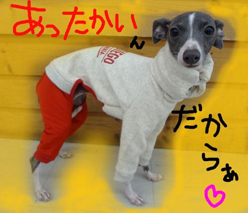 イタ服-1.jpg