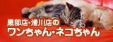 黒部店・滑川店のワンちゃん・ネコちゃん