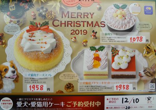 クリスマスケーキ2019.jpg